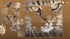 Zagraj Jigsaw Puzzle Classic