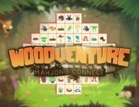 Play Woodventure
